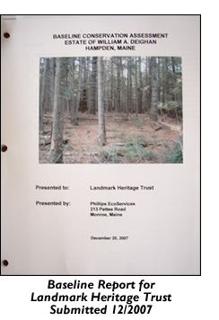 Baseline report for Landmark Heritage Trust